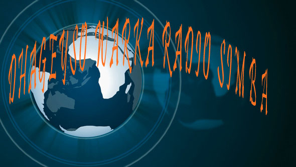 Warka Radio simba